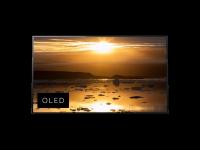 Televizorius OLED SONY KD55A1