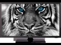 Televizorius eSTAR LED TV 19D1T1